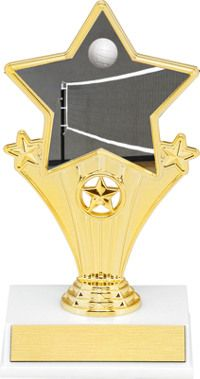 Volleyball Super Star Trophy | Dinn Trophy New! Volleyball super star trophy. Featuring 40 letters of free trophy personalization, this trophy is an unbeatable value ($0.10 per additional character)!