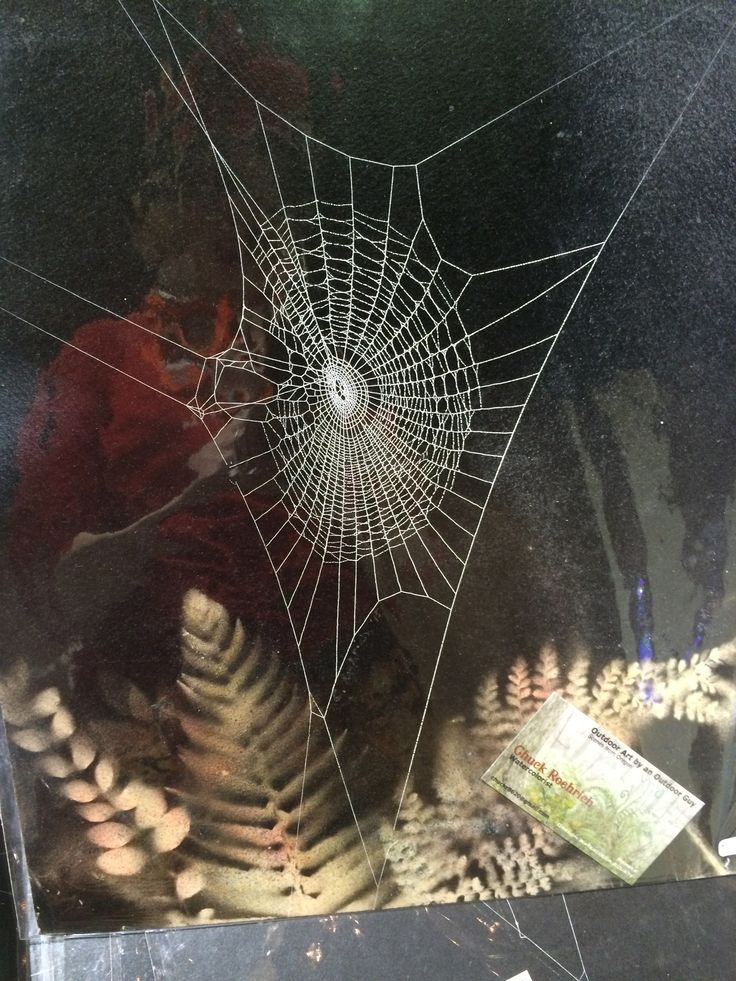 Real cobwebs captured and made frameable by Chuck Roehrich