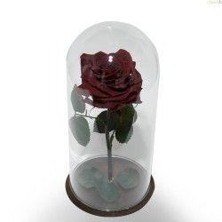 Rosa Roja Preservada en Cristal