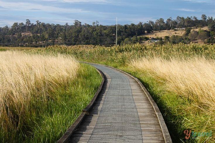 Tamar Islands Wetlands Walk, Tasmania