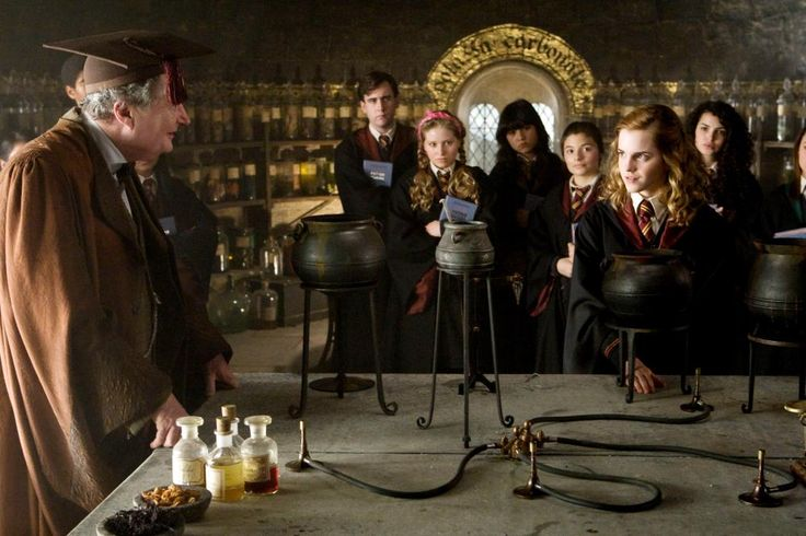 HARRY POTTER AND THE HALF-BLOOD PRINCE, Jim Broadbent (left), Emma Watson (front right), 2009. ©Warner Bros.