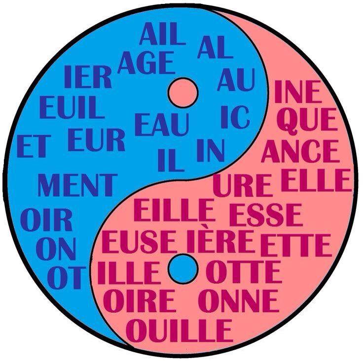 Masc vs fem Learn french, Teaching french, French words