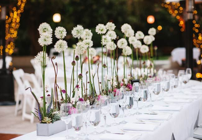 Love a side of whimsy with my dinner. Photo: Luminaire Images