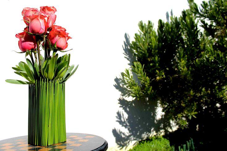 Rosas y leucadendron entre varas verdes.