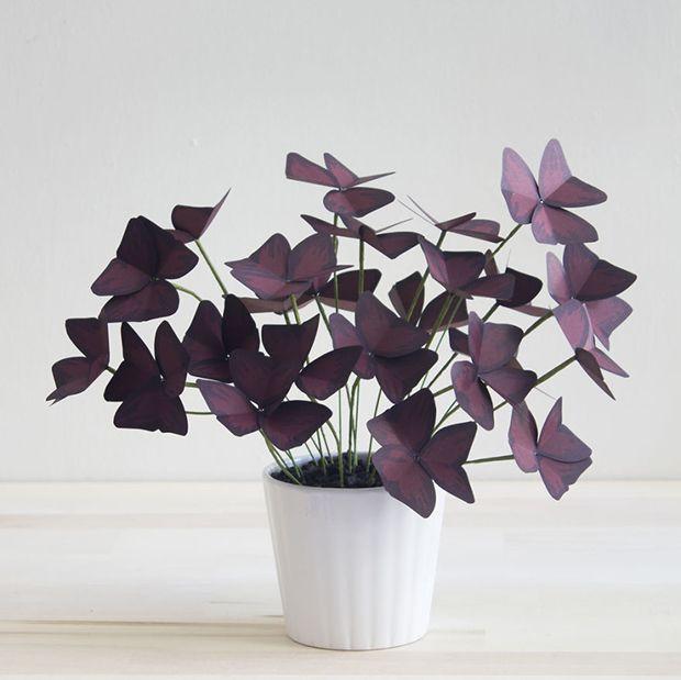Corrie Hogg é uma designer de NY que cria uma infinidade de modelos e cores de plantas de papel usando materiais simples. Confira seu trabalho e DIY.