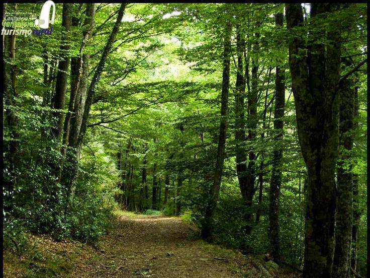 Monte Hijedo #Valderredible #Cantabria