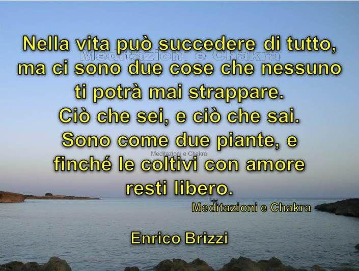 http://www.ilgiardinodeilibri.it/libri/__le-regole-della-liberta.php?pn=4319