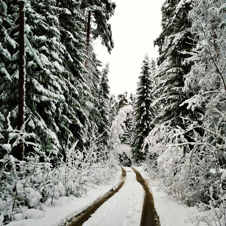 Winter wonderland in Finland Suomi