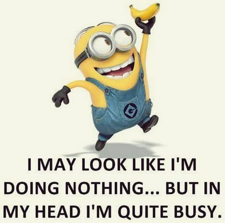 Funny minions images with quotes (10:51:18 PM, Friday 21, August 2015 PDT) – 10 pics