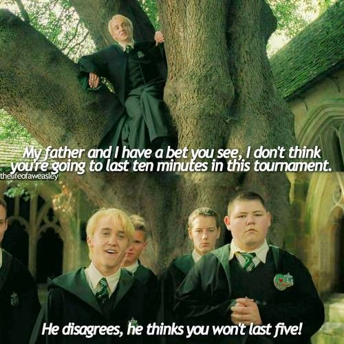 Draco Malfoy - willing to bet that Harry is better than his dad thinks he is... #underwhelmingtaunt