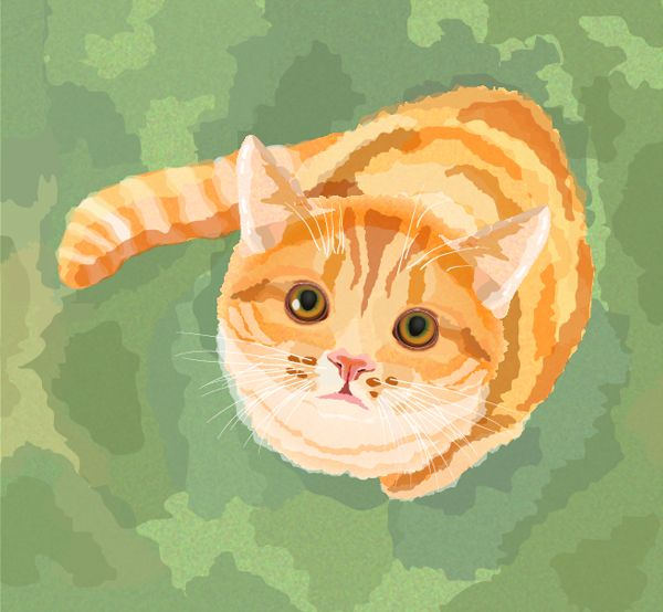 Create a Watercolor Cat in Adobe Illustrator