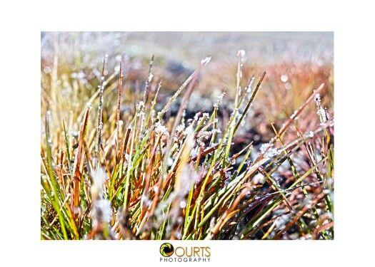 #winterwonderland #snow #southafrica