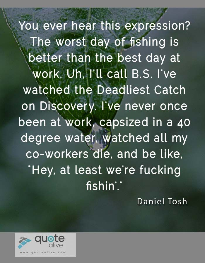 40  Punchy Joke Quotes of Daniel Tosh | http://quotealive.com/legend-person-quotes/daniel-tosh/40-punchy-joke-quotes-of-daniel-tosh/