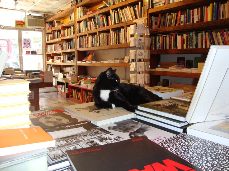 how to find love in a bookshop read online