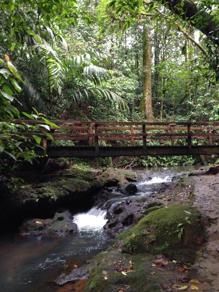 Hotel Termales del Bosque en Quesada, Alajuela