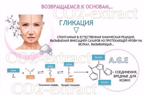 Человеческий организм - большая химическая лаборатория, которая ещё не полностью исследована. Понимание процессов происходящих внутри тела, станет ключом ко многим неразрешённым до сих пор вопросам, в том числе и к разгадке о возрастном старении организма. Открытие такого процесса, как гликация, стало невероятным шагом к пониманию механизмов старения, а значит, и мечта сохранении молодости стала ближе к реальности. #EstPortal #эстетическийПортал #косметология #тело #гликация #коллаген…