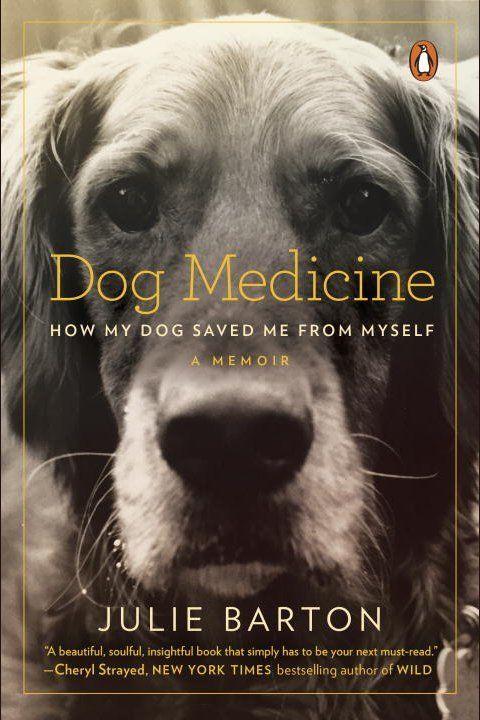 how to teach quantum physics to your dog pdf