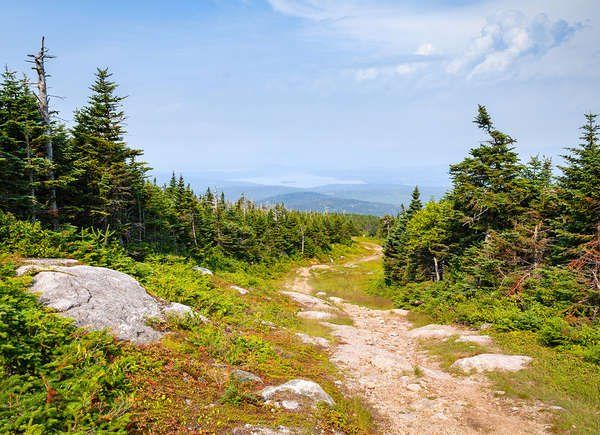 The Most Scenic Hiking Trails In Every State Hiking Trails