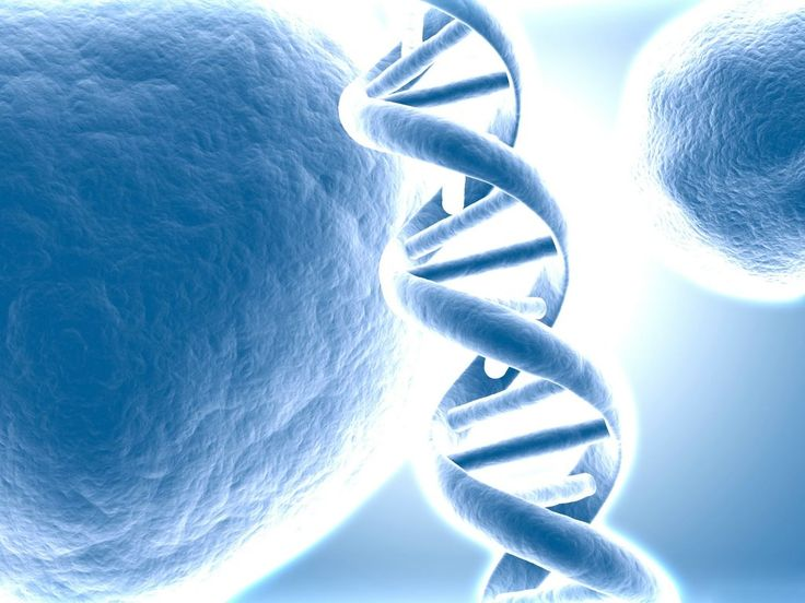 spiral in our DNA