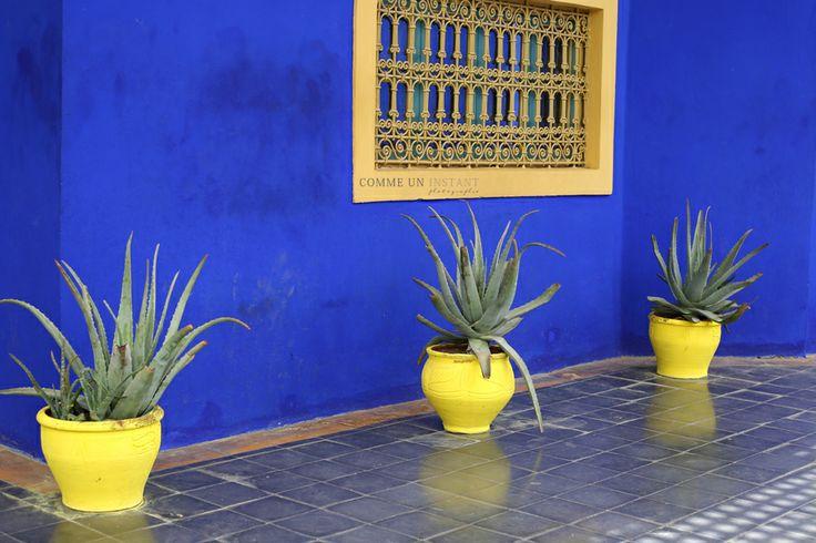 Photographie Marrakech * Jardin de Majorelle www.commeuninstant.com