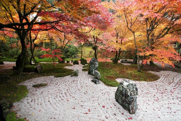 光明禅寺 Komyozen-ji Temple (in autumn)