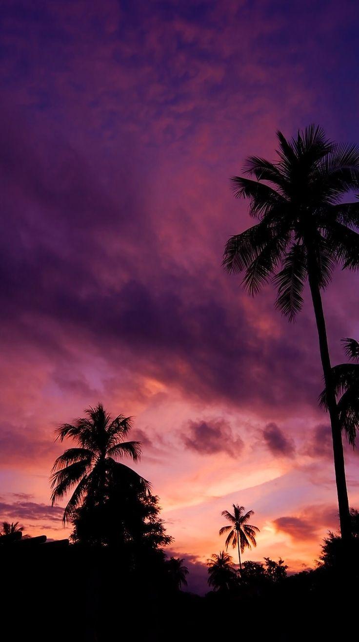 Iphone Wallpaper – Erinnert mich an unseren letzten Morgen in Miami