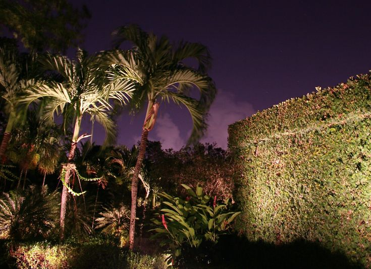 24 best landscape lighting images on pinterest exterior lighting look at the textures and colors that the landscape lighting bring out aloadofball Gallery