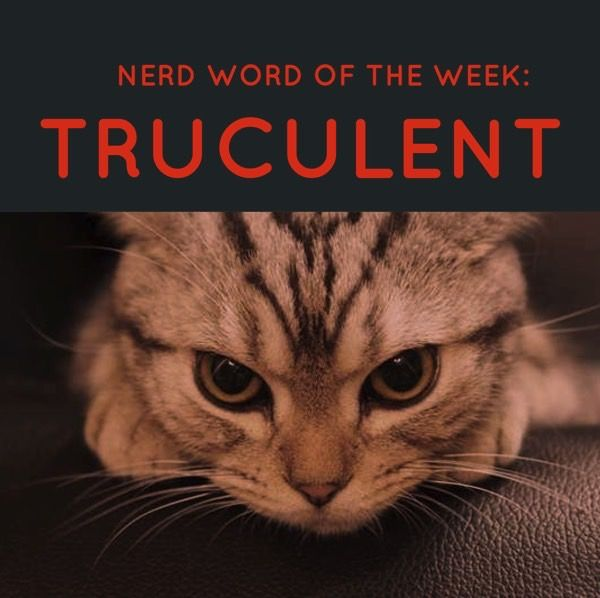 Nerd Word of the Week: Truculent ~ eager or quick to argue or fight. As in: The truculent little beast would hide in the strangest of places, just waiting to attack.