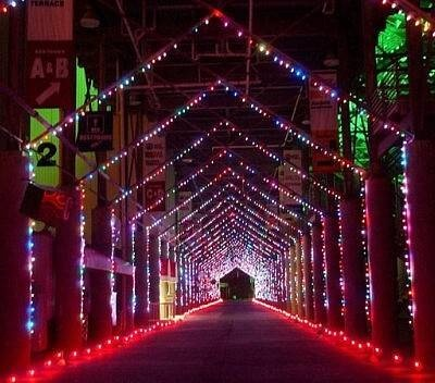 Speedway in Lights - Bristol Motor Speedway:   A Tunnel of Holiday Lights:  Bristol, Tennessee  The roar of the engines is replaced with the twinkling of two million lights during Bristol Motor Speedway's annual Speedway in Lights. Along the four and one-half mile route, including a drive around the World's Fastest Half-Mile, visitors delight in over 200 displays.