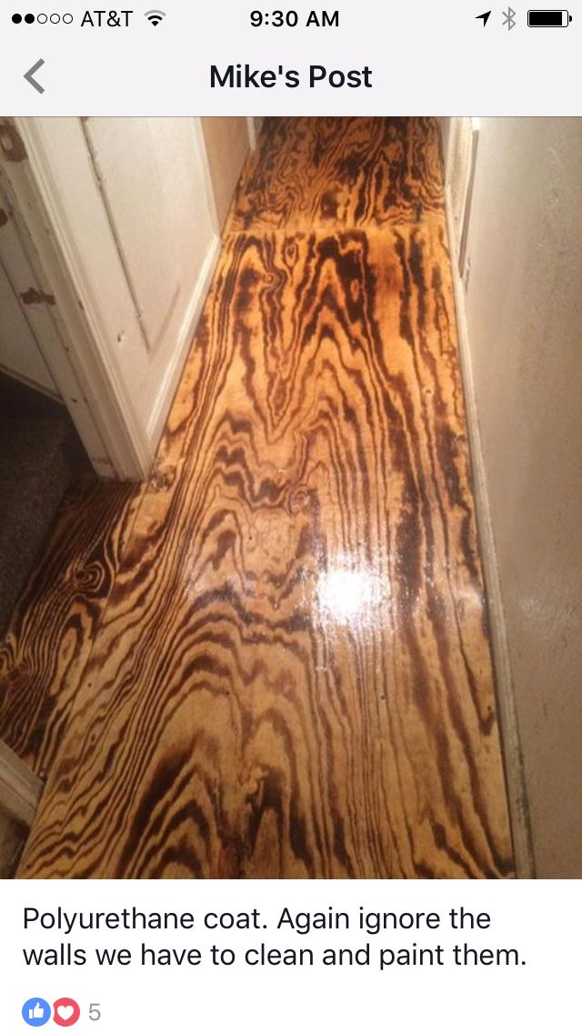 Burned Plywood Floor Ideas Pinterest Plywood House
