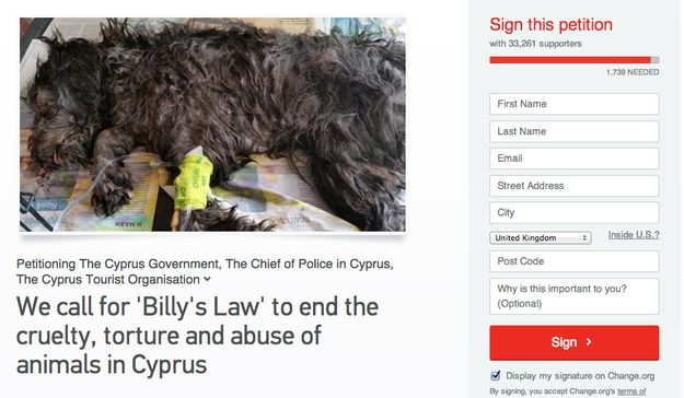 Staff At A Hotel In Cyprus Killed A Puppy By Putting It In A Waste Crusher :(