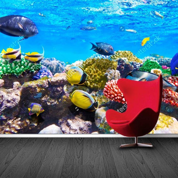 Fotobehang Aquarium | Maak het jezelf eenvoudig en bestel fotobehang voorzien van een lijmlaag bij YouPri om zo gemakkelijk jouw woonruimte een nieuwe stijl te geven. Voor het behangen heb je alleen water nodig!   #behang #fotobehang #print #opdruk #afbeelding #diy #behangen #oceaan #onderwater #koraal #rif #koraalrif #vis #vissen
