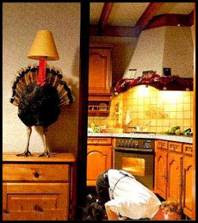 Funny Thanksgiving Turkey Picture