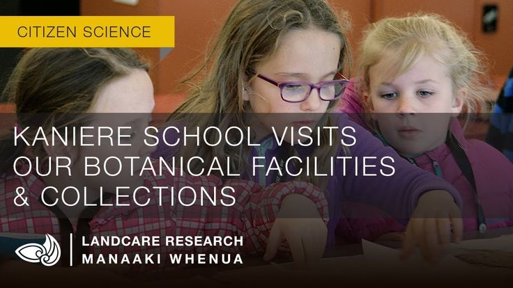 Kaniere School visits our botanical facilities & collections - LANDCARE RESEARCH VIDEO