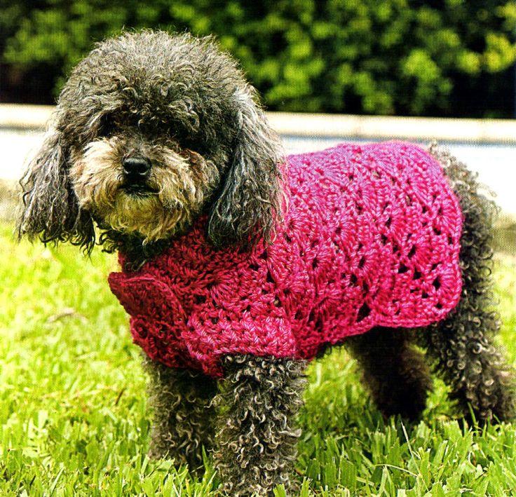 tejidos artesanales en crochet: vestido calado en crochet para tu perrita; Pretty coat for dog!