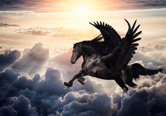 Pegasus Backdrop Flying Horse Scene Premade Backdrop Digital Backdrop Download Digitale Hintergrunde Pferd Fantasie Hintergrund