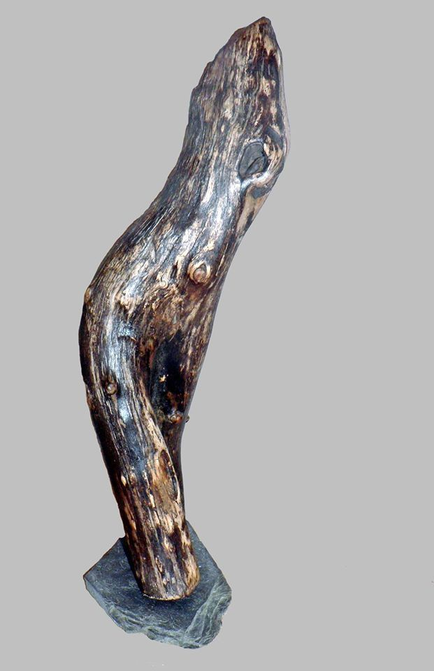 147 best sculpture bois flott images on pinterest bon for Traiter le bois flotte