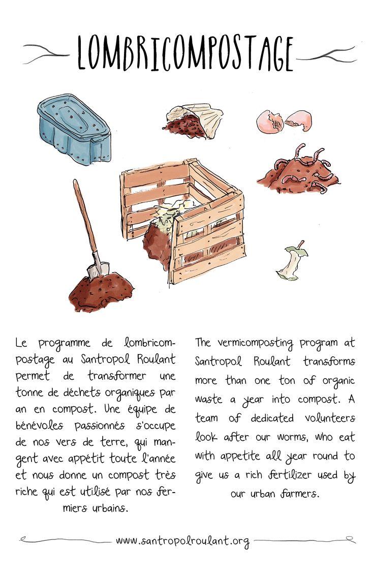 Illustration for Santropol Roulant's vermi-composting initiative.
