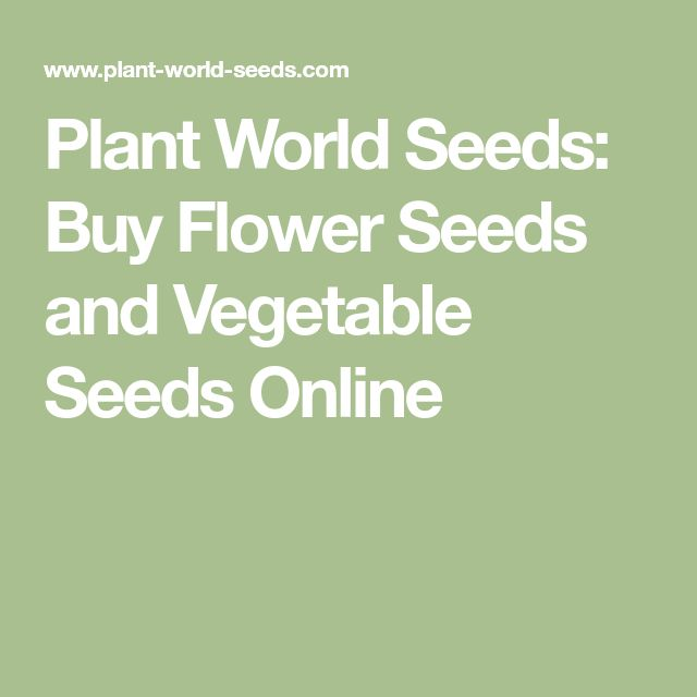 Plant World Seeds: Buy Flower Seeds and Vegetable Seeds Online