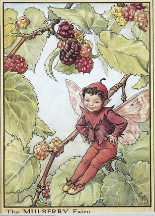 Mulberry Fairy, Cicely Mary Barker