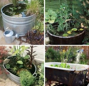 An easier way is to create a container pond – a pond in a large container!   http://www.skimbacohome.com/2011/04/backyard-relaxing-oasis/
