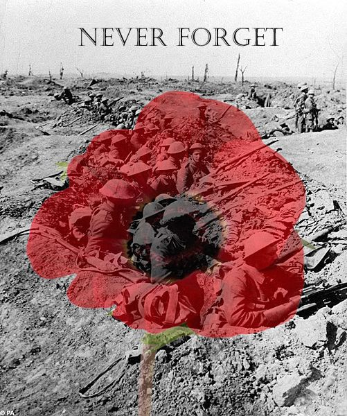 Remembrance day is coming up. Remembrance poppy, the British Legion.  Keep their memory alive so many dead for nothing