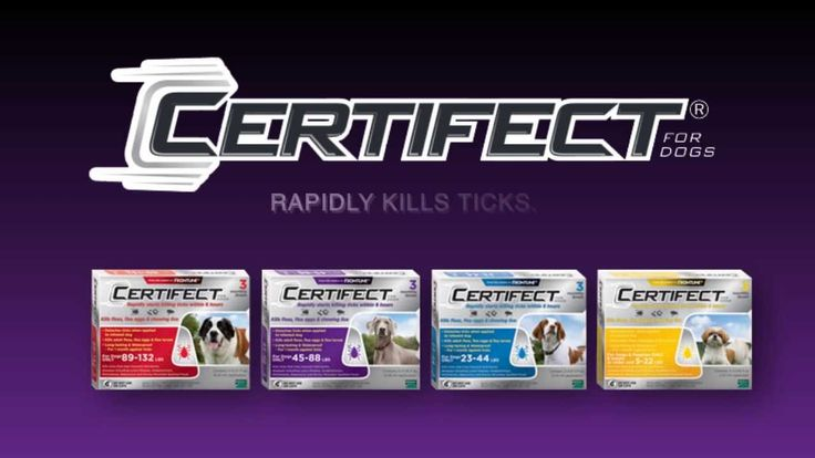 Introducing CERTIFECT. Convenient, Fast-acting, Long-lasting Spot-on Treatment For Control Of Ticks, Fleas And Chewing Lice. For Dogs & Puppies 8 Weeks Or Older,  A monthly application of CERTIFECT® kills all stages of ticks, completely breaks the flea life cycle and controls chewing lice infestations.  learn more at www.californiapetpharmacy.com Facebook: http://www.facebook.com/calpetrx Twitter: http://twitter.com/#!/CalPetRX Pinterest: http://pinterest.com/CalPetRx