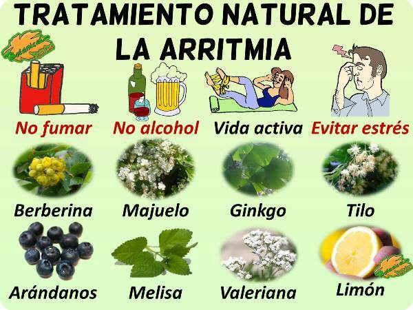 tratamiento natural arritmia plantas medicinales para el corazón y remedios   – Salud