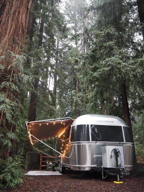 set up camp in the woods, lights