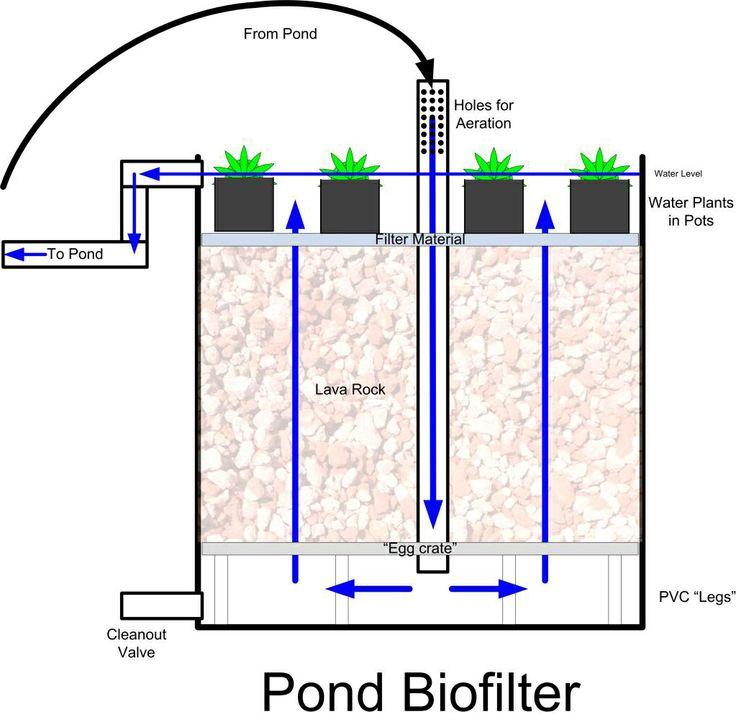 100 best filter images on pinterest ponds aquaponics for Pond filtration system diagram
