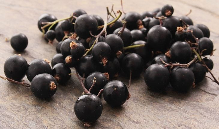 Learn about the potential health benefits of Black Currant (Ribes Nigrum) including nutrition facts, medicinal uses & side effects.
