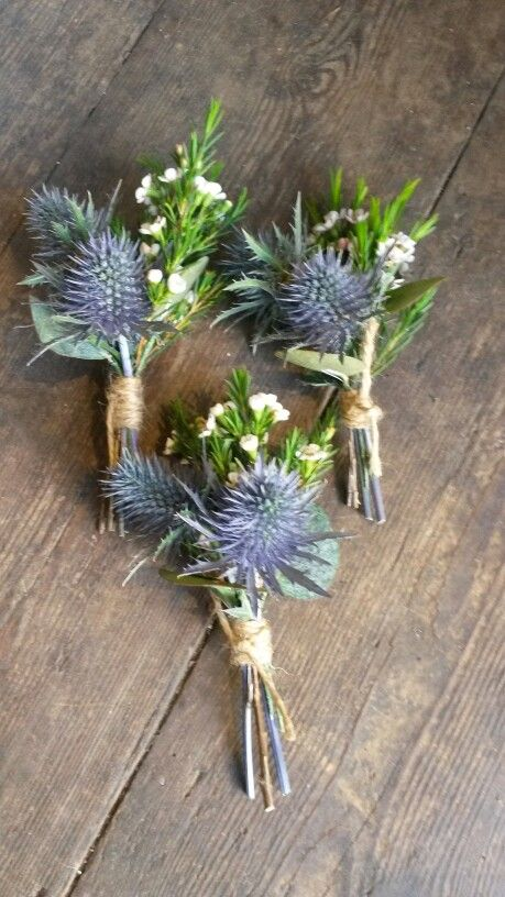 Simple buttonholes of sea holly and wax flower ...