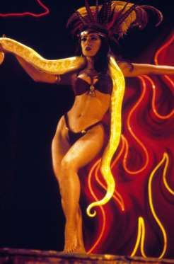 From Dusk Till Dawn - Moviestore Collection/Rex Features