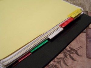 Foster Care Record Keeping with Printable Worksheets: Divide the Binder up into Sections